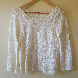 Express lace embroidered sheer top